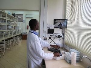 wet-lab-microscope-22monitors