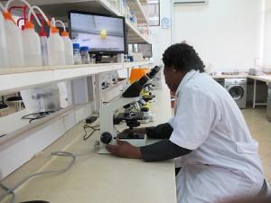 wet-lab-virtualmicroscope2