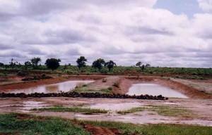 Peace Corps Treatment Ponds
